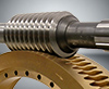 DUPLEX worm gear sets